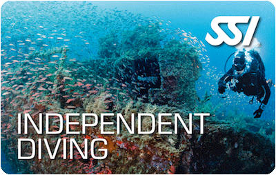 SSI Independent Diver